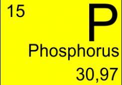 Phosphorus doped fibers